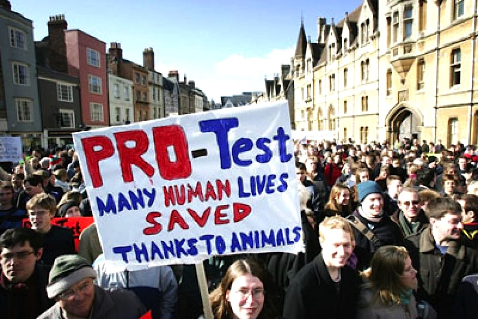 stance against animal testing Committed to cruelty-free collections, but big brands like marc jacobs beauty  and kat von d have taken a firm stance against animal testing.