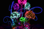 substance-shutter72330421-magic-mushrooms