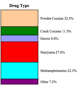 prison population drug type