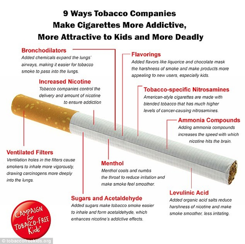 Here's what's actually in your cigarette Photo via